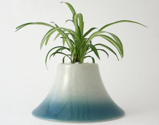 Plant Fuji
