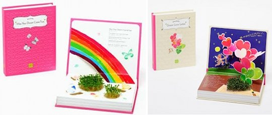 Green Story Plant Growing Picture Book
