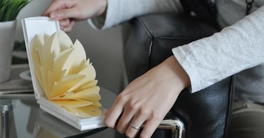 Chokotto Oasis Paper Humidifier