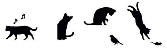 Wall Story Cat Life Removable Stickers