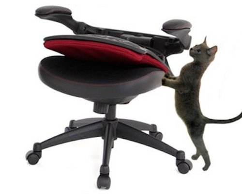 Norenya Isu Anti-Cat Chair