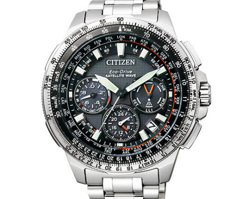 Citizen Promaster Eco-Drive CC9020 Watch