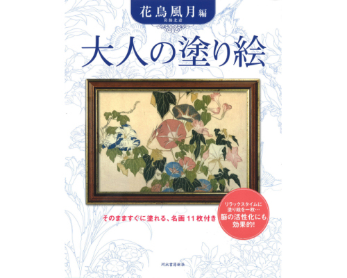 Coloring Book for Grown-Ups Hokusai Nature Pictures