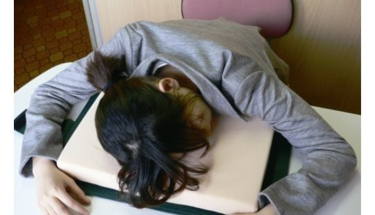 Dictionary Desk Pillow