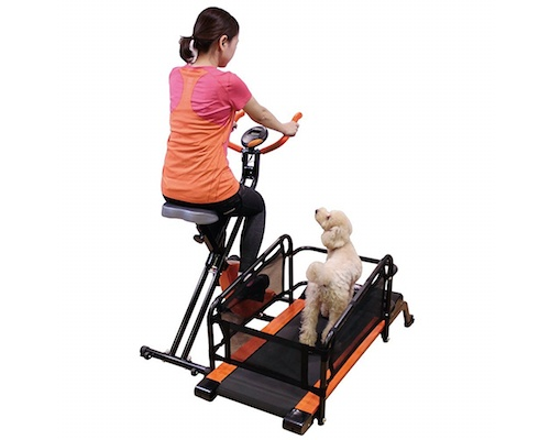 Doggy Health Run Pet Owner Exercise Treadmill