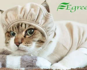 Egree Cat Hat