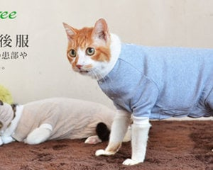 Egree Cat Pajamas Loose