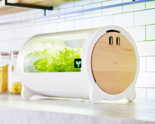 foop Lite Hydroponic Grow Box