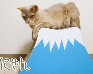 Mt Fuji Nyan Cat Scratching Post