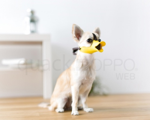Oppo Dog Muzzle Quack Super Small