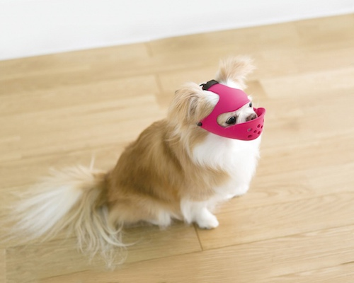 Quack Face Dog Muzzle Small