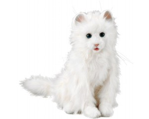 Yume Neko Dream Cat Celeb Robotic Pet