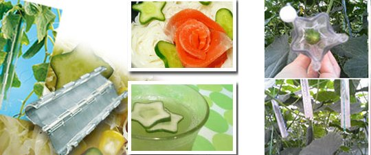Star Shaped Cucumber Mold Set