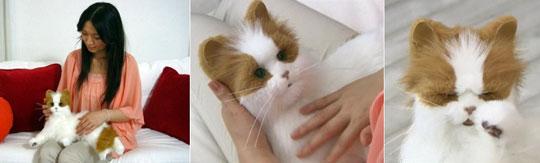 Dream Cat Venus - Yume Neko Robotic Cat