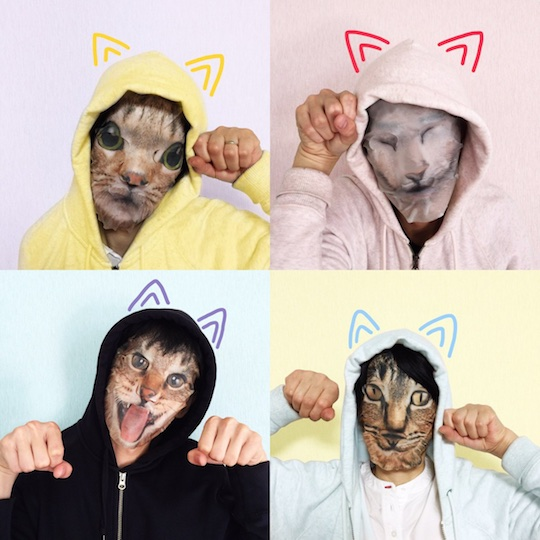 Cat Face Packs (Four Pack)