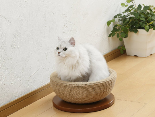 Bonbi Arkon Cat Scratching Bowl Pad
