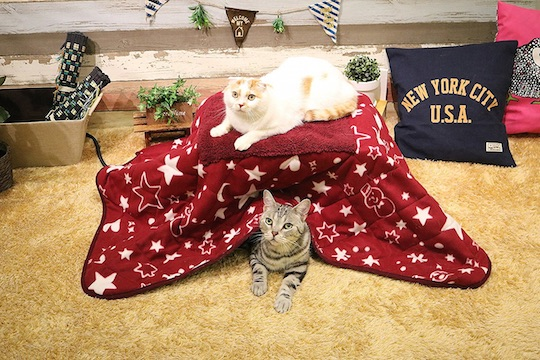 Far-Infrared Kotatsu Heated Table for Pets