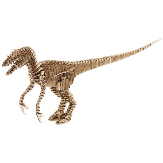 d-torso Raptor Paper Craft Model