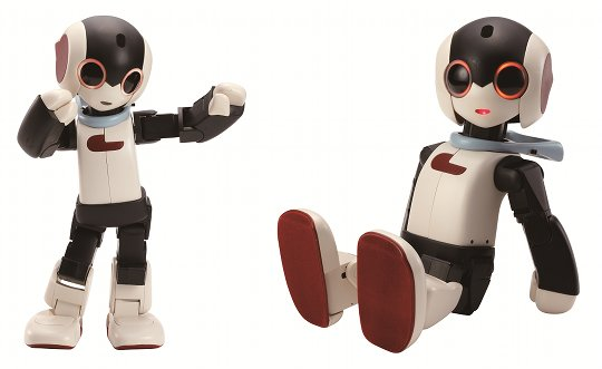 Robi Robot (Pre-assembled Version)