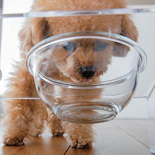 Acrylic Pet Food Table