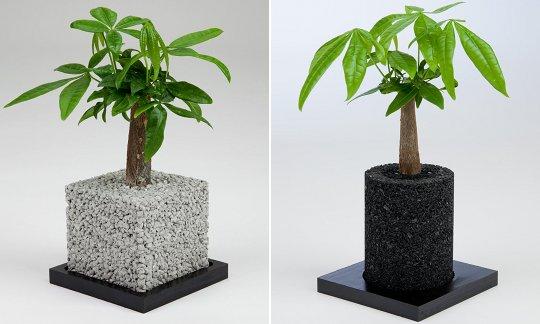 Eco Pochi Plant Kit