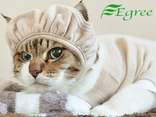 Egree Cat Hat