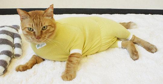 Egree Cat Pajama Suit
