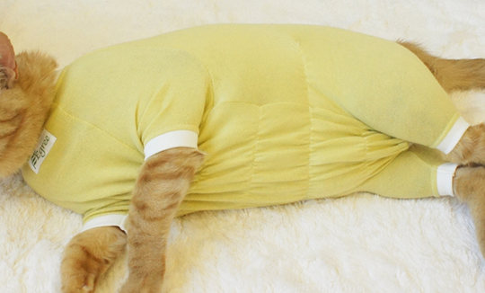 Egree Cat Pajama Suit
