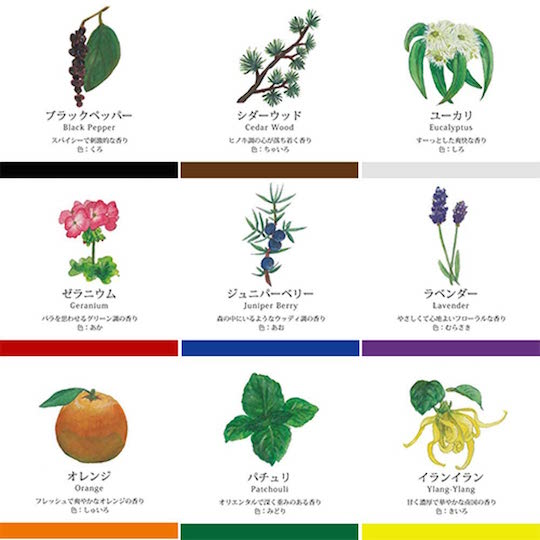 Kanogu Scented Watercolor Paints (9 Colors)