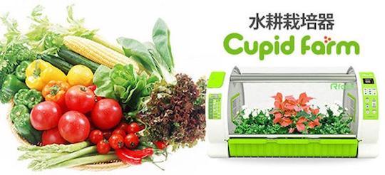 Cupid Farm Automatic Grow Box