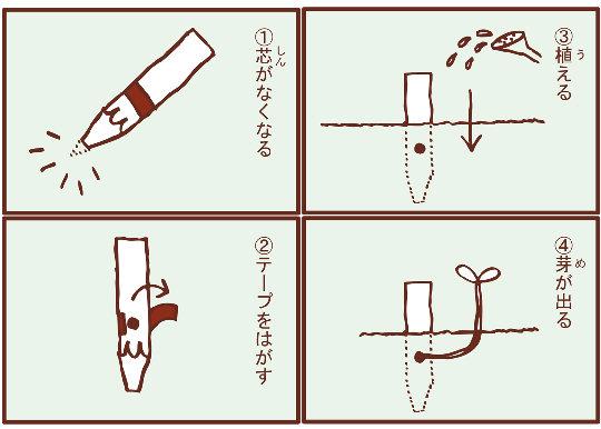 Sakura-saku Cosmos Plant Pencils (Pack of Four)