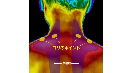 Atama Hotton Neck Circulation Helper Pad