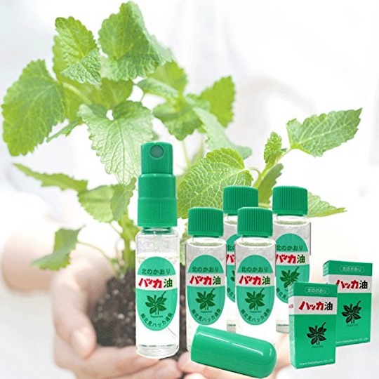 Japanese Peppermint Essential Oils Value Pack