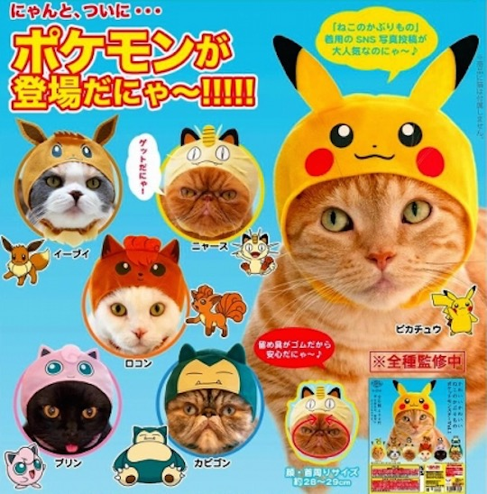 Character headwear for your pet 2f17aaa532a4