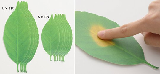 Blatt Thermometer aus Papier