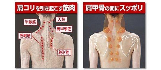Sukkiri Pillow Neck and Shoulder Massager