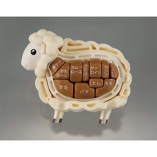 3D Sheep Dissection Puzzle