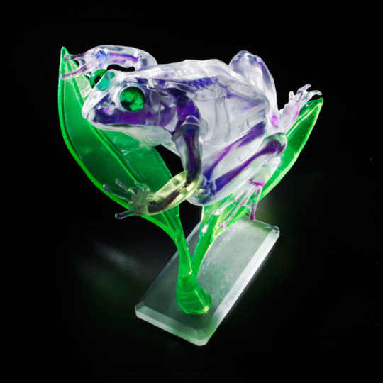 Dual Layer See-Through Animal Puzzle