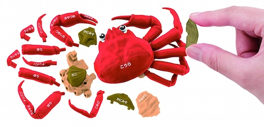3D Japanese Snow Crab Dissection Puzzle
