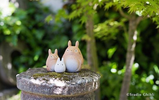 Totoro Shigaraki Ceramics Set