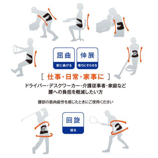 Poji Back Core Support Belt