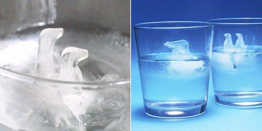 Polar Ice Eiswürfelformen
