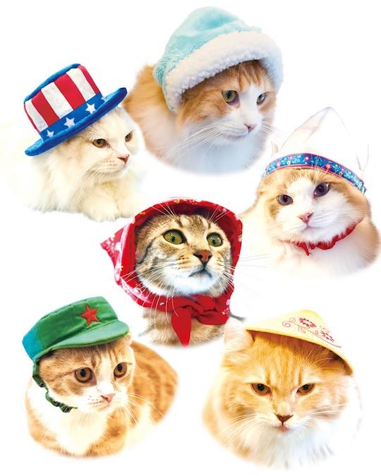 Necos Cat Hats World Traveler (8 Pack)