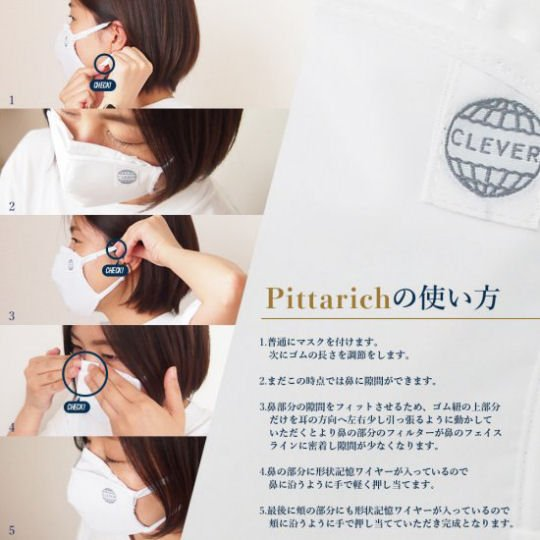 Pittarich High-Performance PM 2.5 Face Mask