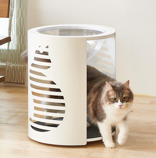Clear Capsule Cat Cylinder