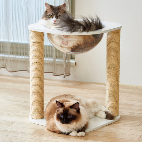Clear Capsule Cat Scratching Post