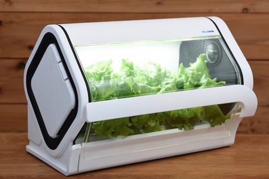 Yasai Monogatari Hydroponic Grow Box