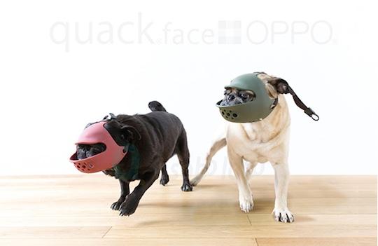 Quack Face Dog Muzzle
