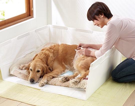 Peppy Indoor Dog Potty