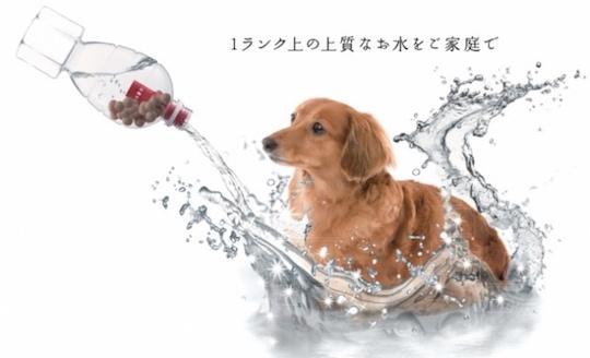 Rozai Nouveau Pet Mineral Supplements Drink